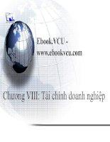 Chương VIII: Tài chính doanh nghiệp