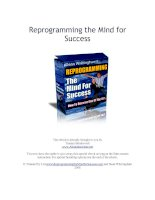 Tài liệu Reprogramming the Mind for Success ppt