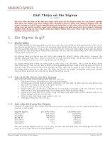 Tài liệu Giới Thiệu Về Six Sigma doc