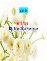 Bài soạn Minh hoa Bai 47 - Khi hau Chau Nam cuc