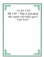 """Tài liệu Luận văn """" Một số giải pháp đẩy mạnh xuất khẩu gạo ở Việt Nam"""" ppt"""
