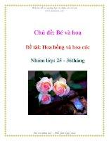 Tài liệu Chủ đề: Bé và hoa - Đề tài: Hoa hồng và hoa cúc - Nhóm lớp: 25 - 36tháng docx