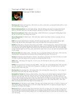 Tài liệu Thuật ngữ về TMĐT vần M,N,O pptx