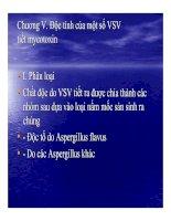 Tài liệu BÀI GIẢNG VI SINH SAU THU HOẠCH - Phần 4 doc