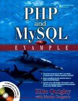 Tài liệu PHP and MySQL by Example- P1 docx