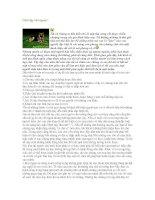 Tài liệu Cách dạy chó ngoan pdf
