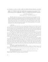 Hiệu lực phòng trừ sâu khoang (spodoptera litura fabr ) của nấm isaria javanica (frider  & bally) samsom & hywel jones