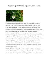 Tài liệu Nguyệt quới thuốc trị cảm, tiêu viêm pdf