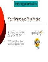 Tài liệu Online Video Marketing pdf