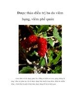 Tài liệu Dược thảo điều trị ho do viêm họng, viêm phế quản docx
