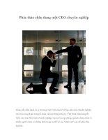Tài liệu Phác thảo chân dung một CEO chuyên nghiệp docx