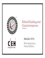 Ethical Hacking and Countermeasures v6 module 17 web application vulnerabilities