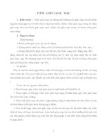 Tài liệu Giáo trình Viêm loét giác mạc ppt