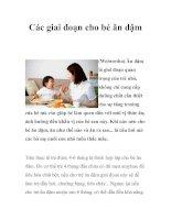 Tài liệu Các giai đoạn cho bé ăn dặm docx