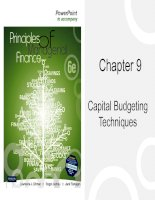 Chapter 9   capital budgetting techniques