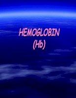 Tài liệu HEMOGLOBIN (Hb) pptx