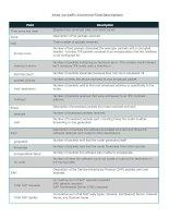 Tài liệu show ipx traffic Command Field Descriptions pptx