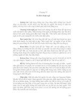 Tài liệu Giáo trình về Văn hóa kinh doanh quốc tế Chương 19+20 docx