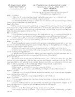 ĐỀ THI HỌC SINH GIỎI LỚP 12 TỈNH NINH BÌNH 2012-2013 LẦN 2 môn sinh học