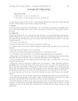 Tài liệu Chương 10: Cơ quan thị giác ppt