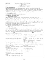 Bài giảng giao án lớp 5 tuần 26