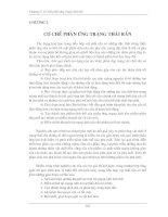Tài liệu Hóa silicat: Chương 2 (Phần III) ppt