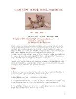 Bài giảng Tục ngữ về Mèo - Học điều HAY