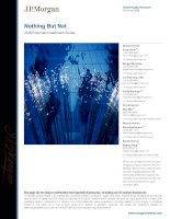 Tài liệu Nothing But Net 2009 Internet Investment Guide 1 docx
