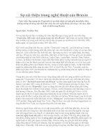 Tài liệu Sự cải thiện trong nghệ thuật của Braxin doc