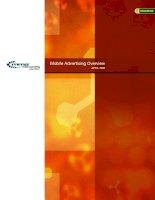 Tài liệu Mobile Marketing docx