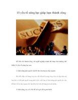 Tài liệu 15 yếu tố năng lực giúp bạn thành công pptx