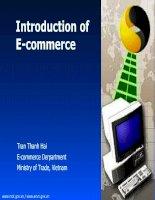 Tài liệu Introduction of E-commerce - Presentation doc