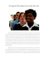 Tài liệu 22 nguyên tắc nâng cao trí tuệ cảm xúc pptx