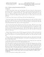 Bài giảng DE CUONG ON TAP- HOI THI GIAO VIEN GIOI CAP HUYEN - NH 2010-2011