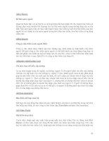 Tài liệu Thuật ngữ bảo hiểm Phần 3 pptx