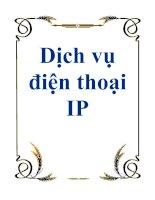 Tài liệu Dịch vụ điện thoại IP pdf