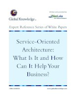 Tài liệu Service-Oriented Architecture: What Is It and How Can It Help Your Business? pdf