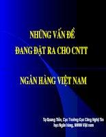 Tài liệu Những vấn đề đang đặt ra cho lĩnh vực CNTT trong ngành Ngân hàng Việt Nam pdf