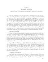 Tài liệu Giáo trình về Văn hóa kinh doanh quốc tế Chương 17+18 pptx