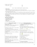 Bài soạn Giáo án Tin học lớp 7 Học kỳ II