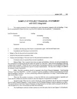 Tài liệu Sample of project financial statement with SOE intergrated pdf