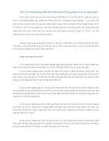 Tài liệu Bộ Tài chính hướng dẫn thi hành một số biện pháp xử lý nợ đọng thuế pdf