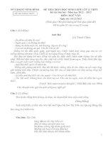 ĐỀ THI HỌC SINH GIỎI LỚP 12 TỈNH NINH BÌNH 2012-2013 LẦN 2 môn văn