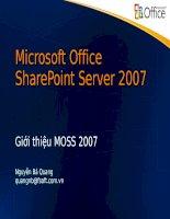 Tài liệu Căn bản về Microsoft Office SharePoint Server - MOSS 2007 (Dạng file ppt) doc