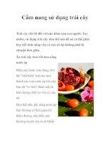 Tài liệu Cẩm nang sử dụng trái cây ppt