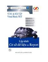 Ví dụ và bài tập visual basic.net-lập trình cơ sở dữ liệu & report