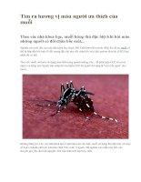 Tìm ra hương vị máu người ưa thích của muỗi