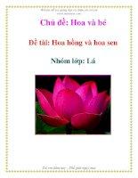 Tài liệu Chủ đề: Hoa và bé - Đề tài: Hoa hồng và hoa sen - Nhóm lớp: Lá ppt