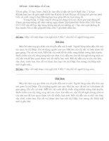 Tài liệu các bài văn hay lớp 3