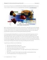 Tài liệu Tạo lập các liên kết bên trong một bức ảnh Photoshop CS pptx